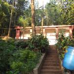 Rear view of homestay