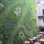 Green wall with tables.