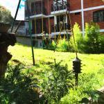 Areas Verdes y jardines