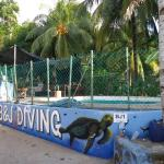 B&J Diving Centre Foto