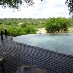 Photo de Lion Sands River Lodge