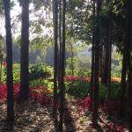Landscape - Tloma Mountain Lodge, Tanganyika Wilderness Camps Photo