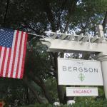The Bergson Resmi