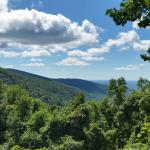 Photo de Blood Mountain Cabins & Country Store
