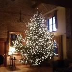 Beautiful Christmas tree at Warren Farm Lodge 2015