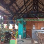 Photo of Hotel Oso Perezoso