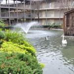 Embassy Suites by Hilton Napa Valley Foto