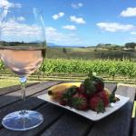 Takatu Lodge & Vineyard-billede