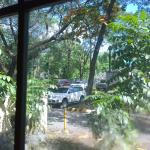 A view out of the window, to the greenery of UP Diliman