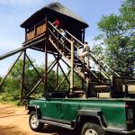 Photo de Mopaya Safari Lodge