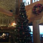 Chilhowee Mountain Retreat Foto