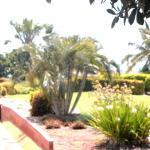 Gardens at the Wharf