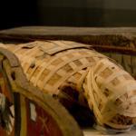 Muzeum Archeologiczne Poznań 1