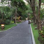 Padma Resort Legian Photo