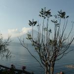 Jardines del Lago Foto