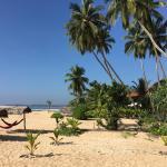 Landscape - Shiva's Beach Cabanas Photo