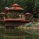 Forra Hill Resort