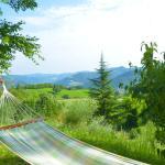 panorama relax