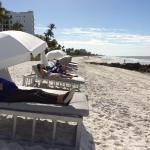 Camastros de pago en primera línea de playa