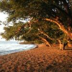 Le jour se leve sur el ceibo, a 50 m du bungalow la plage , et c est l heure de rentrer le betai