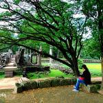 Angkor City Daily Tour Foto
