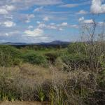 Photo de Tindiga Tented Camp