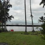 Foto de Native Guide Hawaii