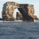 Foto de Galapagos Tip Top Dive & Training