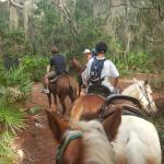 Foto de Happy Trails Walking Horses