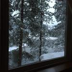 Riverbend Suite! Had a cute, little Christmas tree, a wonderful view, a relaxing jacuzzi tub, an