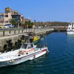 Bisha Fish Harbor