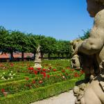 Foto di Rose Garden at the New Residenz