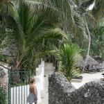 Photo of Leopard Beach Resort & Spa