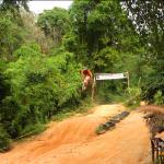 Jungle Motocross track Thailand - Phuket