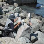 Bill Dan Balancing Rocks Photo