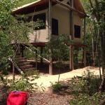 Miombo Safari Camp Foto