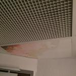 Moisissure au plafond
