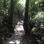Photo de Mombacho Volcano