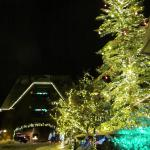 Christmas Lights at the Main Lodge entrance