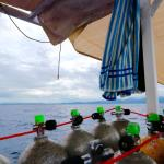 Foto Apo Reef Club