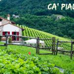 Photo of Ca Piadera
