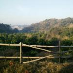 Prakriti Farm Photo