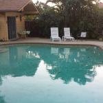 Papaya Paradise Bed and Breakfast Foto