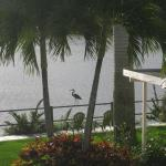 Foto de Crane Creek Inn Waterfront Bed and Breakfast
