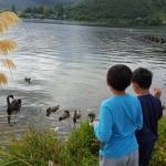 Foto de VR Rotorua Lake Resort