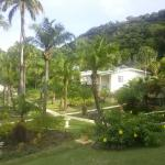 Resort grounds and cottages