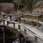 Bridges, benches, island