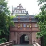 Schlossmuseum Darmstadt Foto