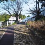 Fukuda Farm Foto
