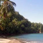 Toucari Beach